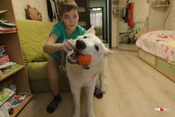 Илья гордится своим псом