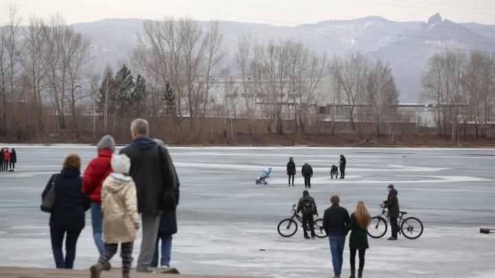 Слёт камикадзе: мамы с колясками и рыбаки бесстрашно гуляют по тонкому льду Енисея