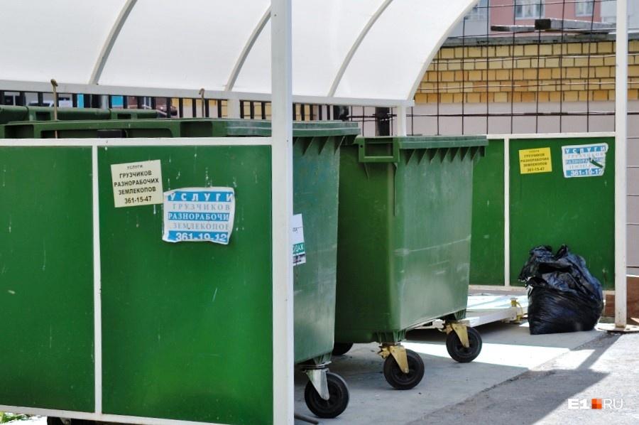 Если контейнеров в округе нет, можно оставлять мусор в пакетах — его должны вывозить по графику