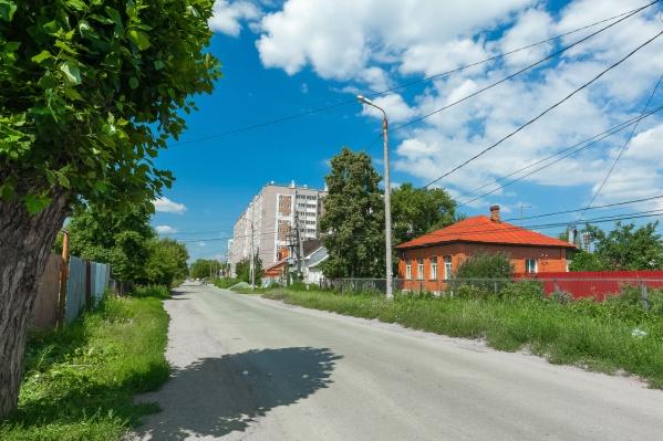 Министр считает, что Челябинску не хватает тополей, но новых сортов, у которых летом нет пуха