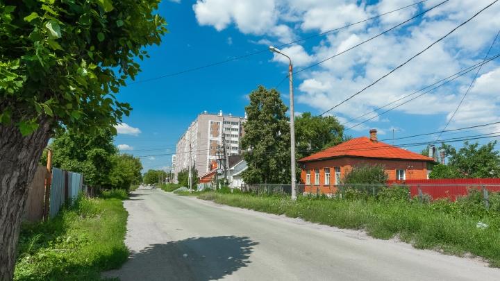 «Скажут, что я неправ»: глава Минэкологии предложил снова засадить Челябинск тополями