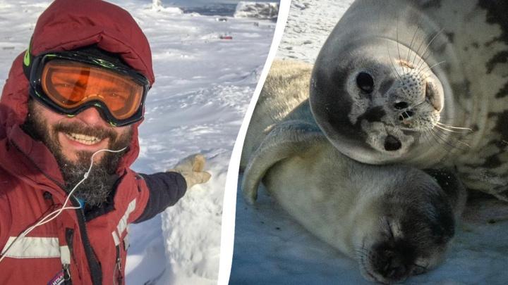 Не хватает женщин и мороженого: полярник из Самары рассказал о трудностях экспедиции в Антарктике