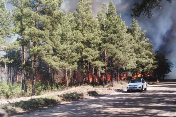 Лесной пожар в Минусинском районе
