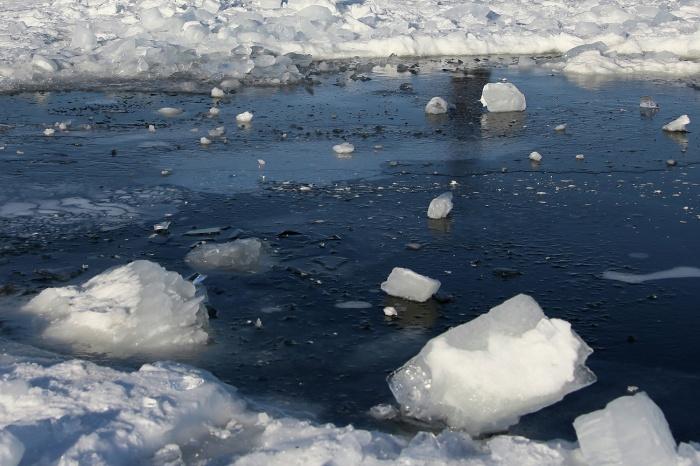 Спасатели засыпали полынью кусками льда и снегом и огородили