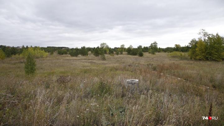 Подняли цену в 13 раз: кто застроит престижный участок рядом с челябинским посёлком Западный