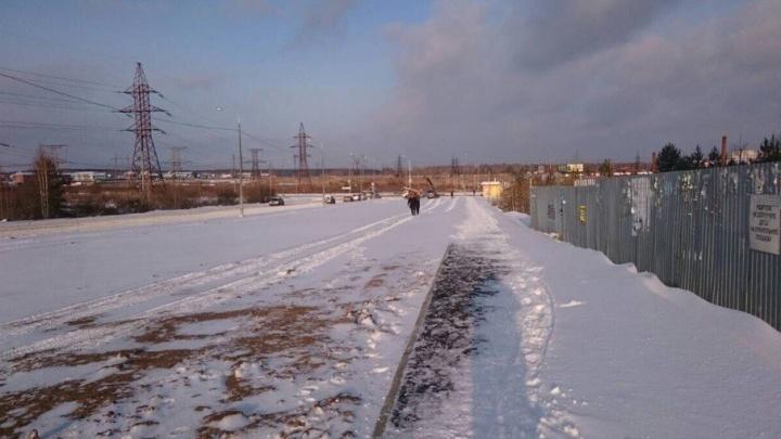 Аллея вместо парковки: жители «Паркового-2» отстояли газон вдоль дороги