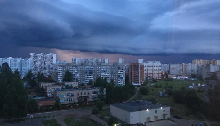 Со скандинавским циклоном придёт северный ветер: каким будет июнь