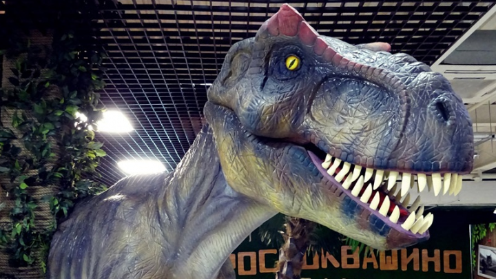 От стресса помогут динозавры: парк юрского периода и ещё пять мест, которые спасут от осенней хандры