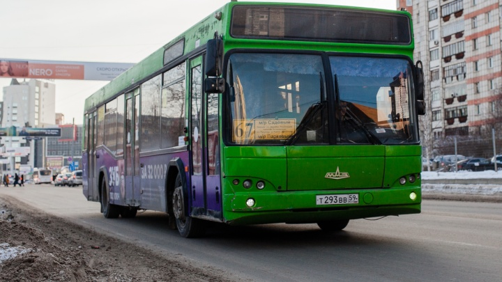 В Перми на 10 автобусных маршрутах введут бесплатные пересадки и безналичную оплату проезда
