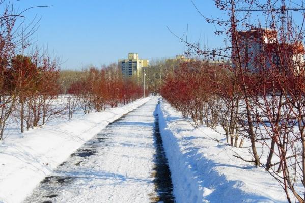 Территория с освещением, современным видеонаблюдением и причалом появится в Затюменском после выполнения работ по благоустройству