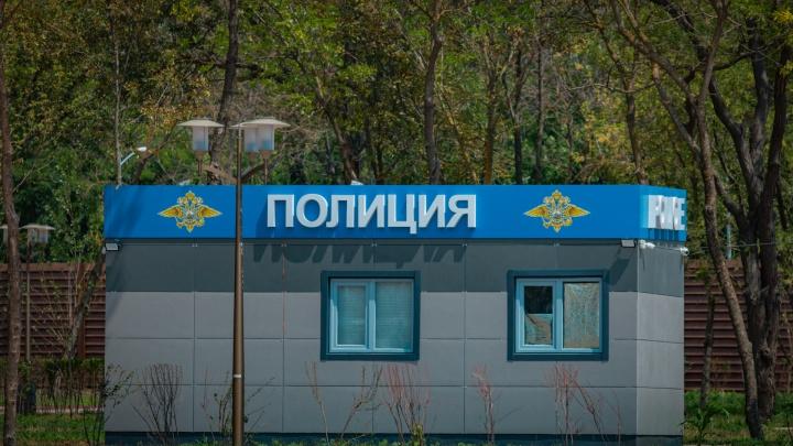Не по-товарищески: на Дону фермер украл чужой урожай подсолнечника