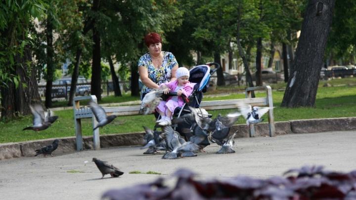 Прожиточный минимум на ребенка в Зауралье составит 10 127 рублей