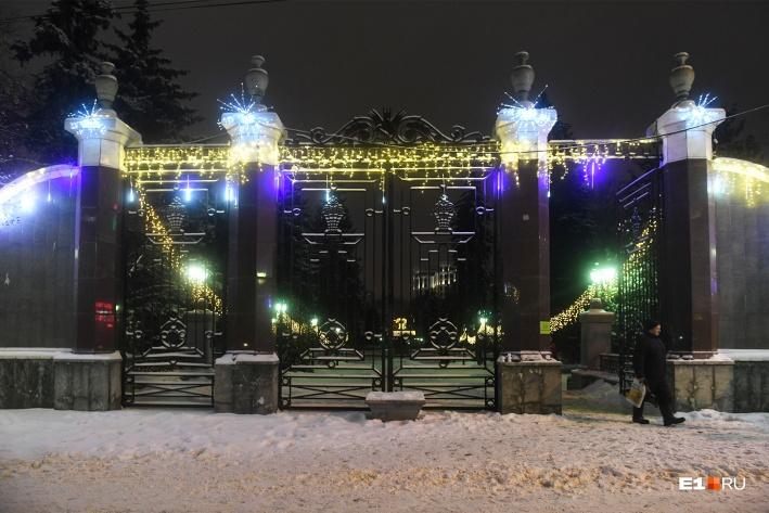 В Дендропарке появилась праздничная иллюминация