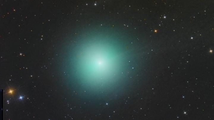 Новосибирец сфотографировал редчайшую изумрудную комету