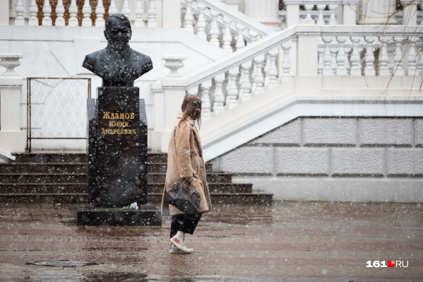Ростов так расслабился от бесснежной погоды, что белые хлопья застали город врасплох