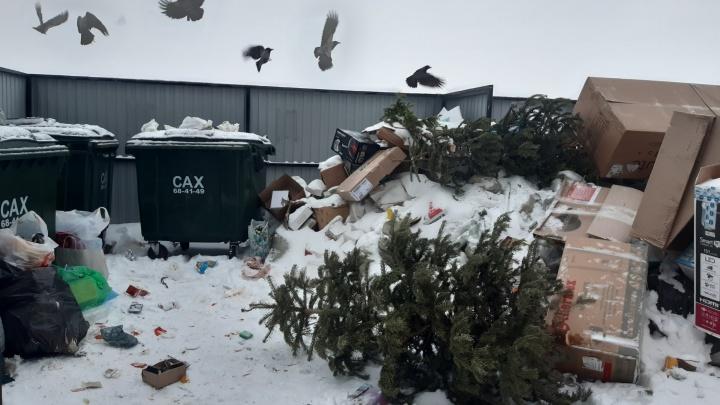 «Меня устраивает» и «будем штрафовать»: Игорь Орлов оценил начало мусорной реформы в Поморье