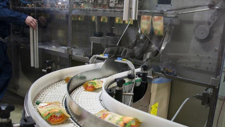 39 безработных: на «Самарском жиркомбинате» приостановлено производство
