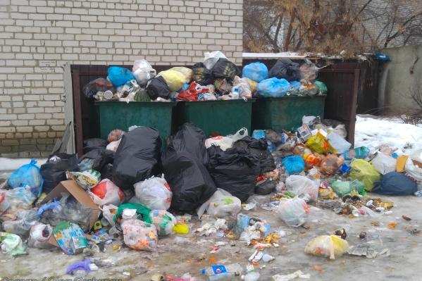 Контейнеры прячутся за мусорными «Эверестами»