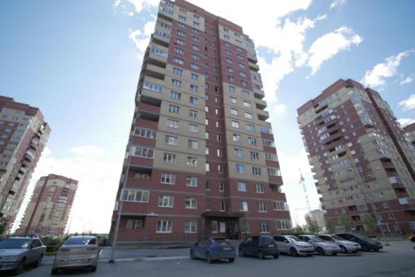 Летучая мышь залетела в квартиру к тюменке, которая живет в 17-этажном доме