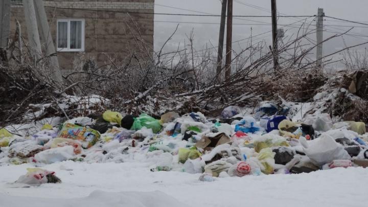 «У оператора не хватает физических сил»: частный сектор Волгограда задыхается от новогоднего мусора