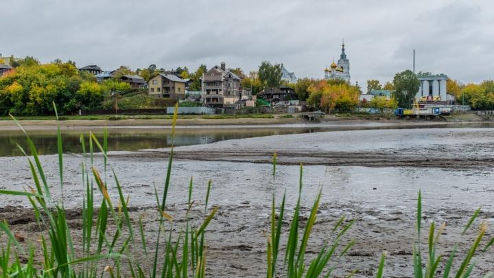 Без воды почти год. В краевой администрации рассказали, когда восстановят Мотовилихинский пруд
