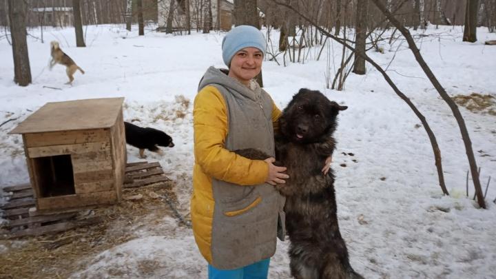Кредитный брокер из Башкирии бросила престижную работу и занялась спасением собачьих душ
