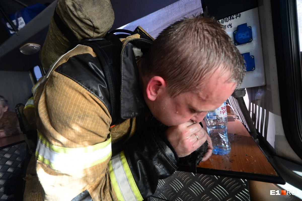 Пожарный Михаил Пашкевич сделал искусственное дыхание котику по имени Гэндальф Серый и спас ему жизнь