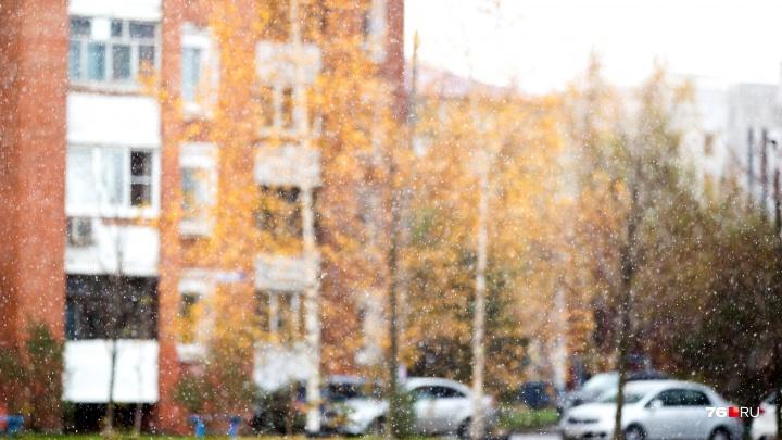 «Если сегодня пасмурно...»: по народным приметам определяем, насколько дождливым будет сентябрь