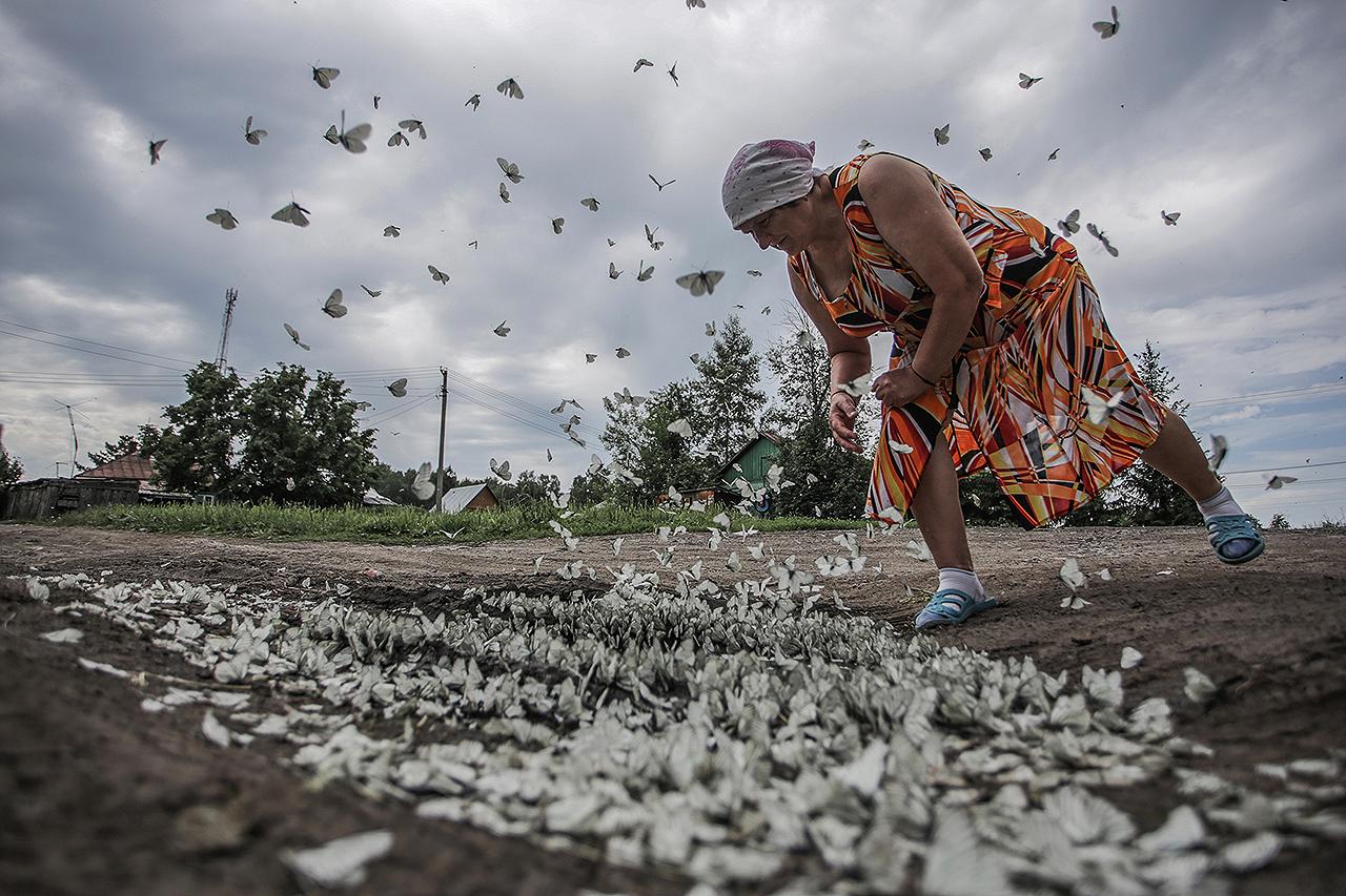 Это фотография сделана в одной из деревень под Новосибирском