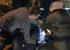 Стали известны подробности аварии на Ильича, где парень на Subaru сбил девушку