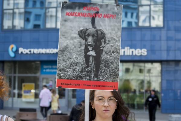 После убийства собаки в «Матрёшкином дворе» в центре Новосибирска прошли акции с требованием строго наказать виновного