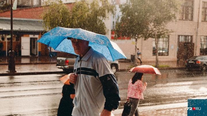 Лето откладывается, нас ждет нулевая температура. Прогноз погоды на выходные в Тюмени
