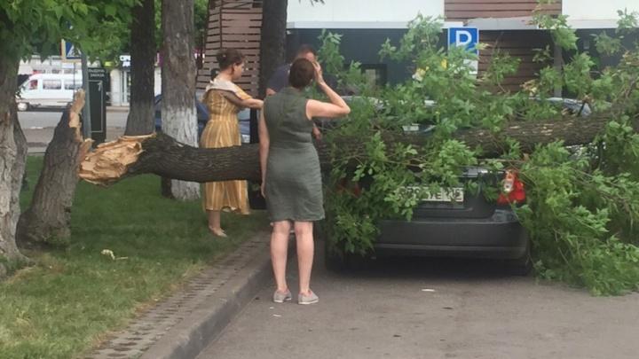 Вот это ветерок: в центре Уфы на иномарку рухнуло дерево