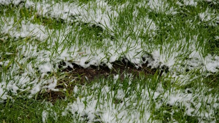 Омские синоптики предупредили о грозах и мокром снеге