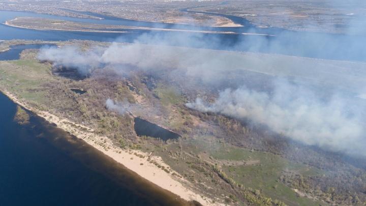 «Огонь дошёл до нудистского пляжа»: в Волгограде горящий остров Денежный сняли с высоты — фото