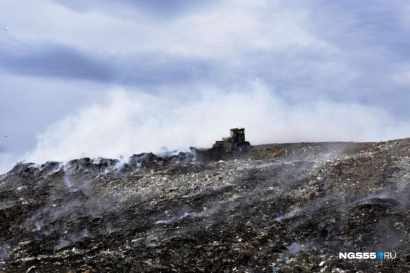 Четыре крупные свалки на территории Омска должны исчезнуть в ближайшие пять лет