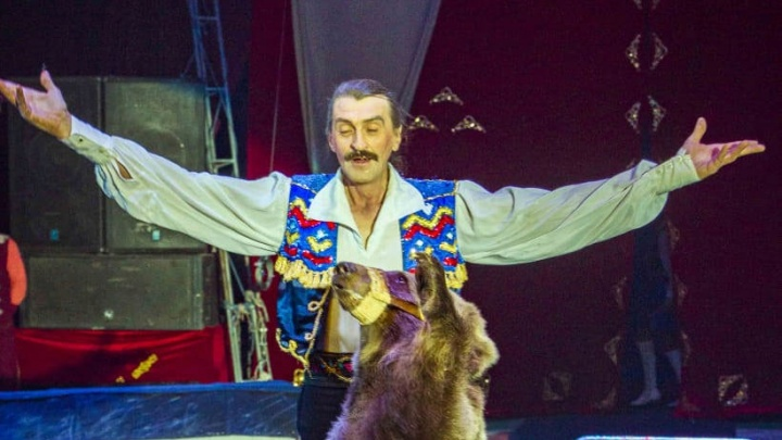Медведей ждут бессрочные гастроли: дрессировщики сообщили, что пока не собираются возвращаться в Новосибирск
