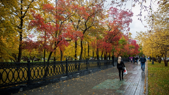 Тепла ждать не стоит: все выходные над Новосибирской областью будет северный воздух