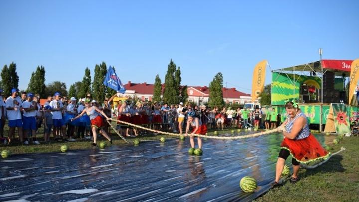 В Камышине устроили гонки на арбузных лыжах и колесницах
