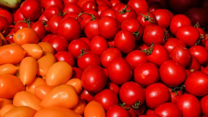 В Перми уничтожили полтонны помидоров