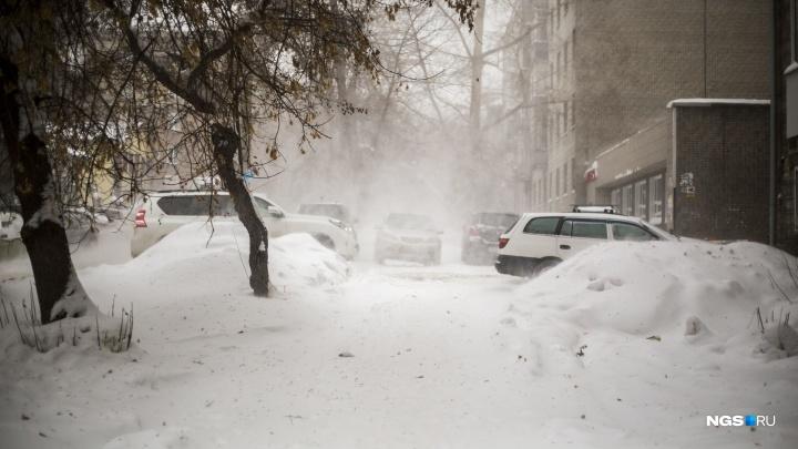 Почему нынче аномально тёплая зима — объясняют синоптики из Новосибирска