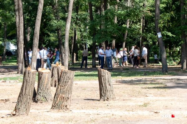 Жители Первомайского района опасаются, что их парк останется «голым»