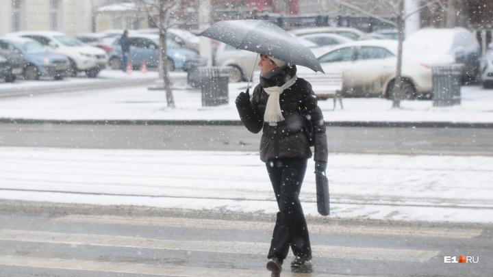 К середине недели в Екатеринбурге похолодает, а затем резко потеплеет до плюсовой температуры