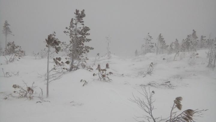 Следователи опросят туристов, которые были в походе с пропавшими на севере Урала девушками