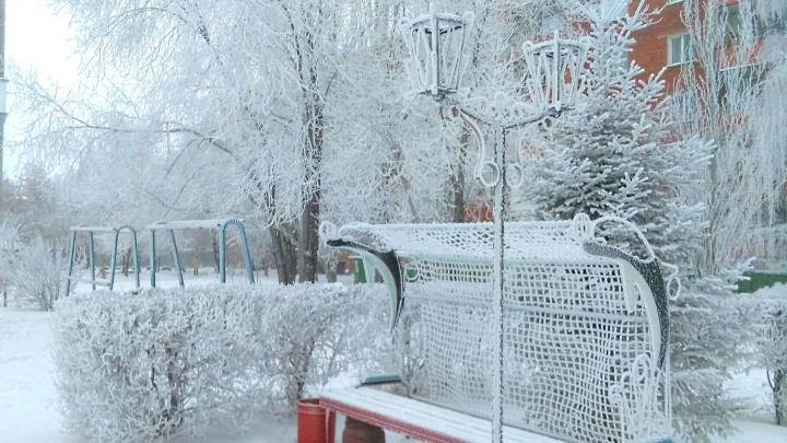 Омские синоптики спрогнозировали усиление ночных морозов до –30 градусов