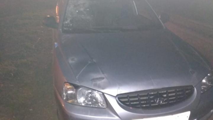 Житель Татарстана насмерть сбил пешехода на трассе в Башкирии