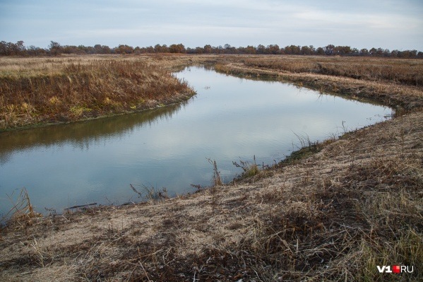 На расчистку почти семи километров русла ериков отводится два года