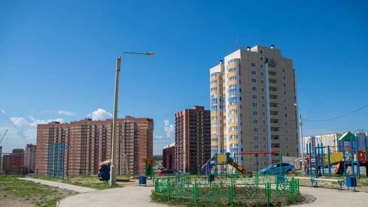Прокуроры заставили строителей высадить деревья в молодом и скандальном микрорайоне Красноярска