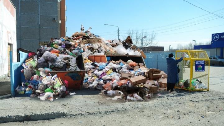 Главного мусорного перевозчика Екатеринбурга из-за долгов отдадут частнику