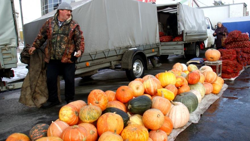 Картошка — по 140, яблоки — по 200: на Маркса начала работать сельскохозяйственная ярмарка